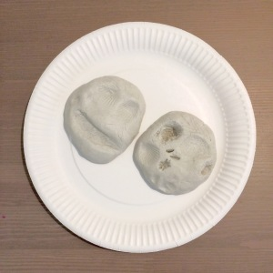diy-mould-fossil-craft