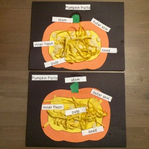 tpt-parts-of-a-pumpkin
